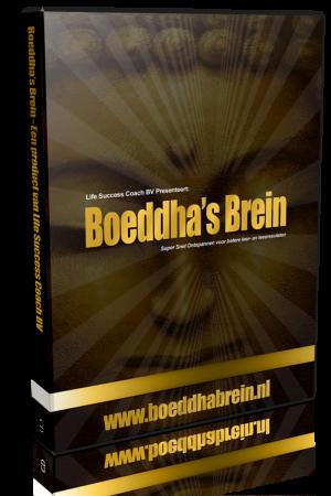 cursus Boeddha's Brein
